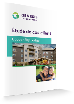 genesis_french_case_study_copper_sky